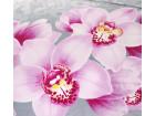 Аромат орхидей 6 сатин